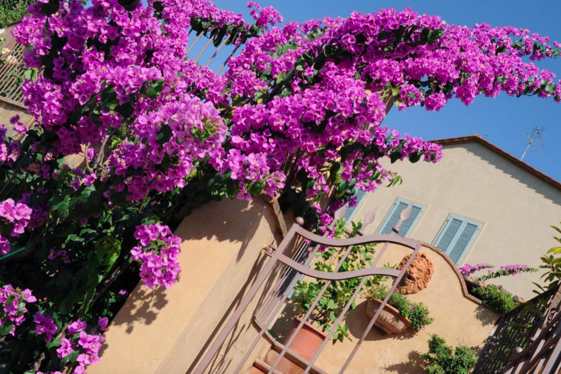 Agriturismo Tuscany Small luxury agriturismo near Volterra in Tuscany